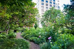 7 Magnificent New York Gardens to Tour This Summer Photos | Architectural Digest
