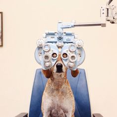 Maddie is getting new eyeglasses today!