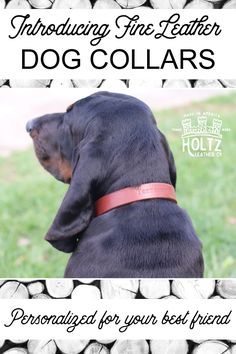 New by Holtz Leather, Leather Dog Collars personalized with your dogs name! We offer sizes to fit most any dog sizes, up to XXLarge. - $49.99
