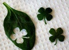 Cute way to do something different for St. Patrick's Day! Cut/punch out clovers from spinich leaves!