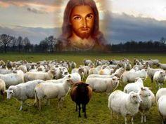 the good sheperd Jesus
