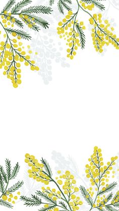 Ideas For Ipad Wallpaper Pattern Flowers Colour Aqua Wallpaper, Framed Wallpaper, Flower Wallpaper, Pattern Wallpaper, Wallpaper Backgrounds, Colorful Backgrounds, Iphone Wallpaper, Trendy Wallpaper, Geometric Wallpaper