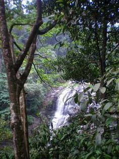Abbi falls - Coorg