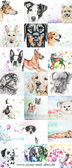 Zeichnungen, Portraits und Illustrationen von Hunden | von Aram und Abra | www.aram-und-abra.de | Aquarell | Zeichnung | zeichnen | malen | #Hund | Hunde | bunt | Tierportraits | Kunst
