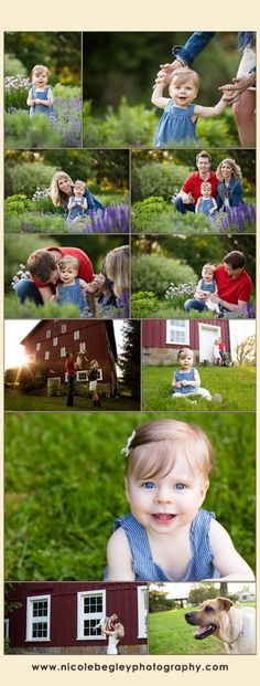 family photography session on a farm - Child and Dog Photography