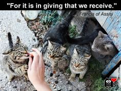 """For it is in giving that we receive."" Francis of Assisi"