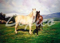 Caballos/Cabalos/Horses. Técnica/Technique: Oleo/Oil on canvas. Tamaño/Dimensións/Size: 55 x 38 cm. Referencia/Referente/Reference: CUADROS0011.