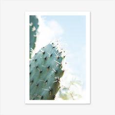 Cactus Print, Photography Prints, Desert Print, Succulent Plants, Cactus Gift, Nature Prints, Boho Decor, Desert Photography, Bohemian #homedecorideas #homedecoronabudget #homedecordiy #homedecorideasmodern #homeoffice #homedecor #homeideas #wallart #walldecor #wallartdiy #art #print #digital #cactusprint #cactusgift #succulentplants #succulentgifts #desertprint #desertphotography