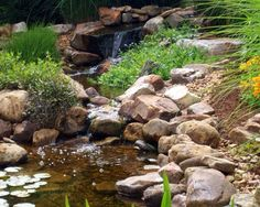 A simple waterfall and small stream fall into a crystal clear Water Garden!