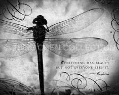 Dragonfly Art - Everything Has Beauty - Confucius quote - Inspirational Wall Art - Inspirational Quo