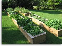 Simply Low-Cost gardening: $ 10 raised garden beds.