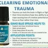 Idaho Blue Spruce – The Oily Guru Idaho Blue Spruce, Yl Oils, Joy, Let It Be, Glee, Being Happy, Happiness