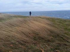 East Point (Saturna Island) - All You Need To Know - TripAdvisor