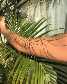 happy bday to the lovely who has one of my favourite plant arms 🥳💚🥳 Pretty Tattoos, Unique Tattoos, Beautiful Tattoos, Small Tattoos, Cool Tattoos, Tatoos, Tatoo Art, Body Art Tattoos, Leaf Tattoos