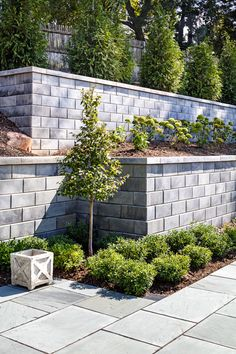 Patio inspiration.  Contemporary landscape ideas for patios, pools and backyards.  Outdoor walls and garden designs.