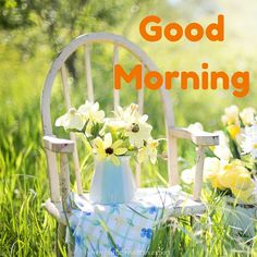 60 Good Morning Images With Flowers   Birthday Wishes Expert