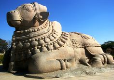 The monolithic Nandi at Lepakshi, one of the largest of it's kind.