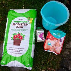 Starting Gardening, Drinks, Bottle, Easy, Food, Drinking, Beverages, Lawn And Garden, Flask