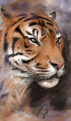 tiger portrait, animal, wiiolis, photoshop