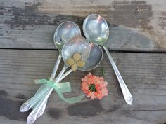 Vintage Silverware Rogers & Bro. Xll Sectional by used2bnewVintage