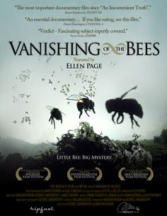 """VANISHING of the BEES""  Film▶ http://FilmsForAction.org/watch/vanishing_of_the_bees"