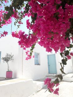 Traveling to Paros Beautiful Islands, Beautiful Beaches, Paros Island, Famous Beaches, Tourist Spots, Small Island, White Houses, Greek Islands, Great Places