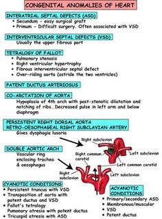 Pediatric Congenital Anomalies of the Heart