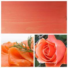 Luminos Salmon Pink