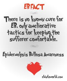 EB Fact - There is no known cure for EB, only ameliorative tactics for keeping the sufferer comfortable. #EpidermolysisBullosa #EBawareness #stopEb #EBaware http://ebinfoworld.com             http://butterflychildamothersjourney.com
