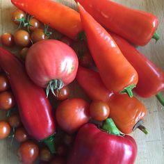 Stuffed Peppers, Vegetables, Food, Stuffed Pepper, Essen, Vegetable Recipes, Meals, Yemek, Stuffed Sweet Peppers