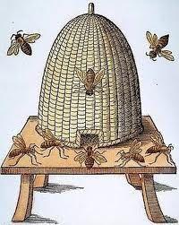 Sketch of bee skep
