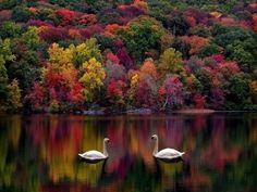 Kezar Lake, NH