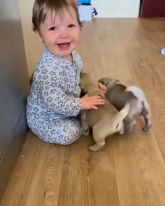 Animals 🙈 - Animals, animals wild, animals funny, animals cutest, animals and pets Funny Babies, Funny Dogs, Cute Babies, Fun Funny, Funny Humor, Cute Baby Videos, Cute Animal Videos, Cute Little Animals, Cute Funny Animals
