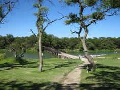 antelope park zimbabwe | Zimbabwe – Antelope Park been there done that!