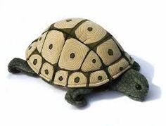 """Résultat de recherche d'images pour """"tortue"""""""