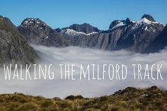 My 4 day journey hiking the Milford Track in New Zealand.