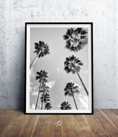 Fotografía blanco y negro impresión de árbol de Palma por TaiPrints