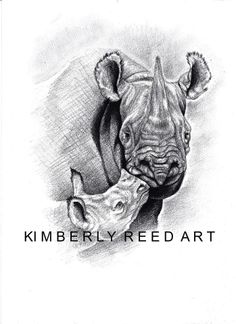 Rhino drawing by artist Kimberly Reed/pencil on multi-medium paper/ size: Amazing Tattoos, Cool Tattoos, Rhino Tattoo, Desenho Tattoo, Rhinos, Rhinoceros, Wild Animals, Paper Size, Tatoos