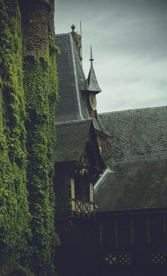 Reichsburg Cochem by yakonusuke on DeviantArt Building Aesthetic, Sword And Sorcery, Wicked Witch, High Fantasy, Second Best, Fantastic Beasts, Photo Art, Woodland, Scenery