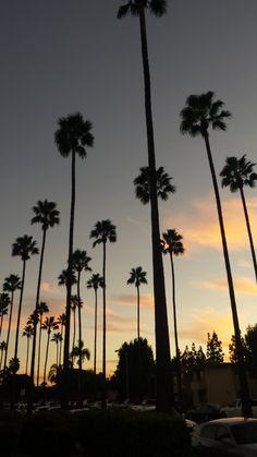 Sunset in Orange City