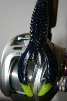 No Bullee! The YUM Wooly Bullee does catch bass. Check the lure out in today's feature article. http://www.bradwiegmann.com/lures/soft-baits/425-yum-f2-wooly-bullee-drives-bass-flipping-crazy.html