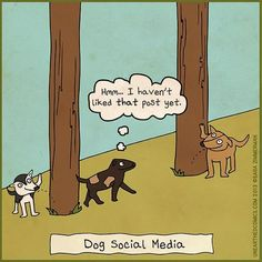 If dogs were on social media ...