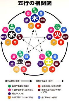 Pentacle, Health Diet, Health Fitness, Muscle And Nerve, 5 Elements, I Ching, Fifth Element, Body Hacks, Traditional Chinese Medicine