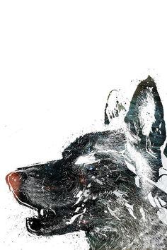 Illustrations by Alex Cherry