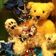 Xmas polar teddy beat with blue poinsettia☆★☆