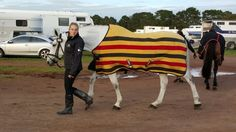 Stripy pyjamas are the best! Rambo Deluxe Fleece in Newmarket Gold