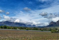 Uncorked wine festival in Franschhoek. Number 7, Wine Festival, How Beautiful, South Africa, Lust, Activities, Canning, Mountains, Places