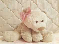 from the story Imagines e Preferencias (Magcon Boys) by (Bia baby Mendes with reads. Magcon, Stuffed Animals, Cute Photography, Boyds Bears, Cute Teddy Bears, Cute Little Things, Favim, First Baby, Toys For Girls