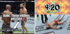 Funny Weed Memes, Weed Humor, Ufc Knockouts, Feelings