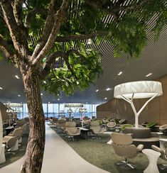 The New Air France Business Lounge Design Inspired by Nature. #Airport #AirportLounge #Amenities #Comfortable #Relaxing #BusinessClassLounge #Nature